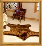 Brown Bear Rug  Grizzly